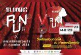 งานวิ่ง Blooms Run 2021 วันอาทิตย์ที่ 21 กุมภาพันธ์ 2564 ณ เทศบาลตำบลเหมืองแก้ว ตำบลเหมืองแก้ว อำเภอแม่ริม จังหวัดเชียงใหม่